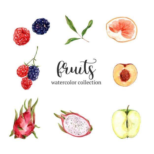 Satz aquarell und hand gezeichnete früchte Kostenlosen Vektoren