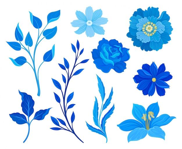 Satz bilder von blauen blumen und blättern. illustration auf weißem hintergrund. Premium Vektoren