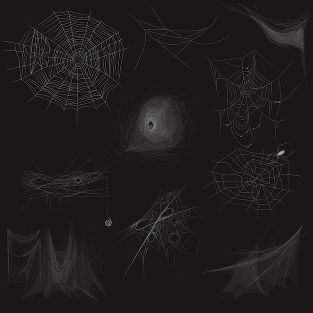 Satz der hohen qualität des spinnennetzkonzeptes Premium Vektoren