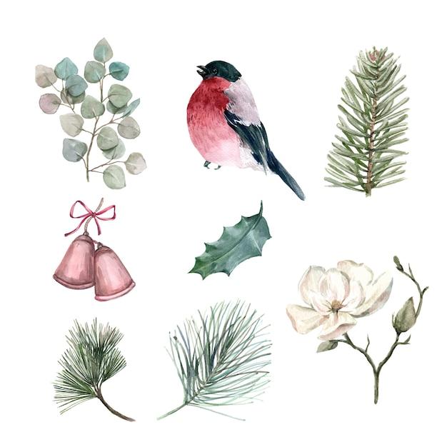 Satz des aquarellwinters, illustration von den elementen lokalisiert. Kostenlosen Vektoren