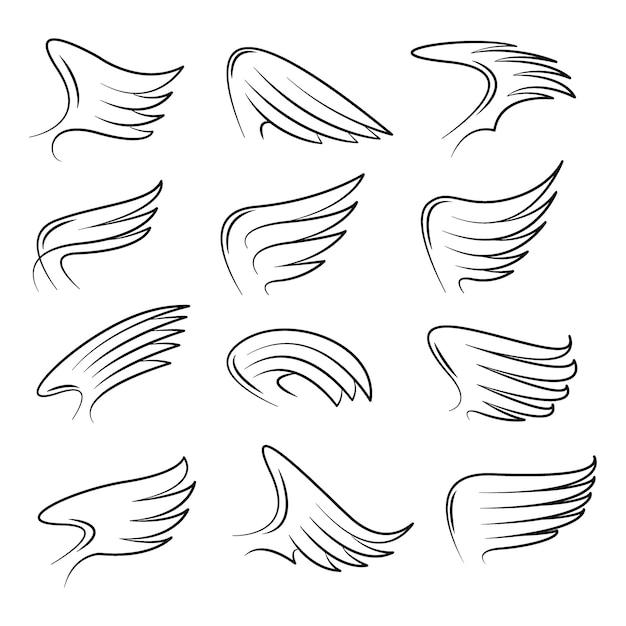 Satz des hand gezeichneten vogelflügelvektors Premium Vektoren