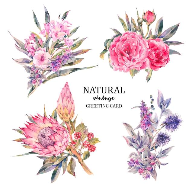 Satz des weinleseblumenvektorblumenstraußes der rosen, protea Premium Vektoren