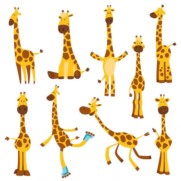Satz fröhliche lustige giraffen mit langem hals. höhenmesser oder meter wand oder wandaufkleber von 0 bis 150 zentimeter, um das wachstum zu messen. kinderillustration Premium Vektoren