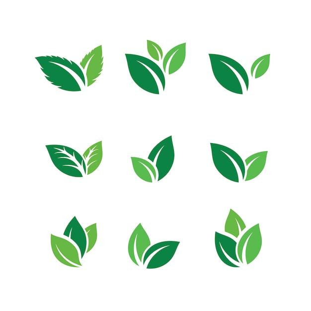 Satz grüne blatt logo design-inspirationsvektorikonen Premium Vektoren