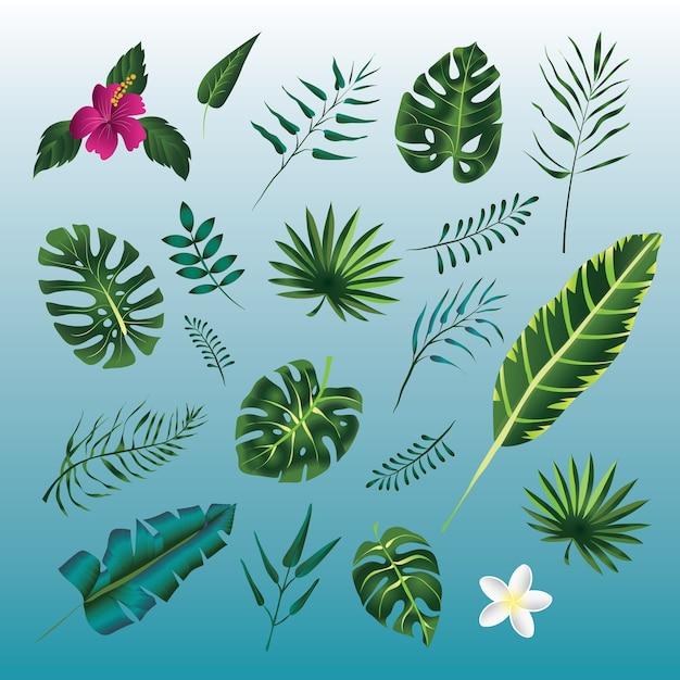 Satz grüner blätter tropischer pflanzen. . Premium Vektoren
