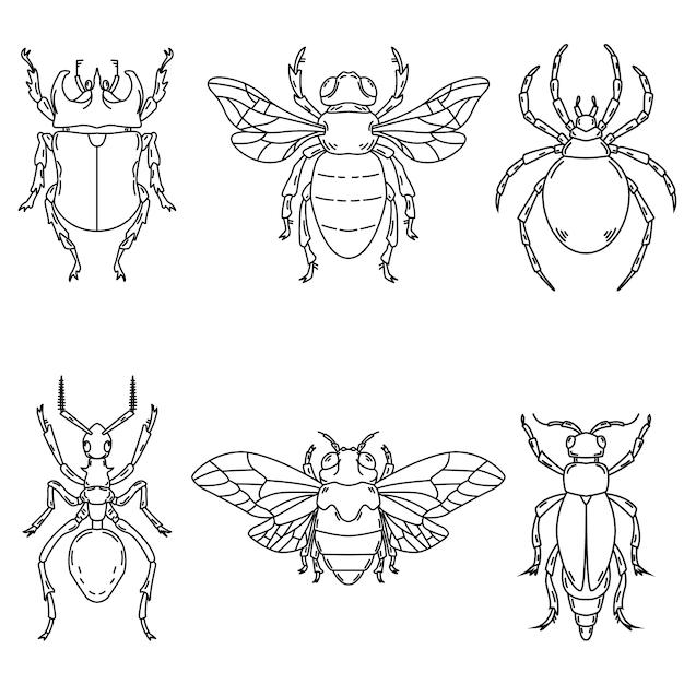 Satz käferillustrationen auf weißem hintergrund. elemente für logo, etikett, emblem, zeichen. illustration Premium Vektoren