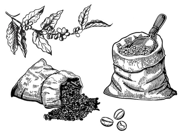 Satz kaffeebohnen in der tasche in der grafischen art von hand gezeichnet Premium Vektoren