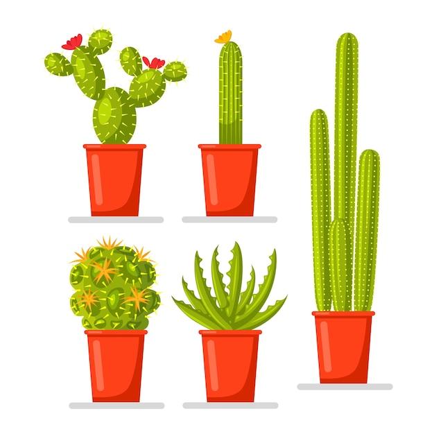 Satz kaktuspflanzen im topf Premium Vektoren