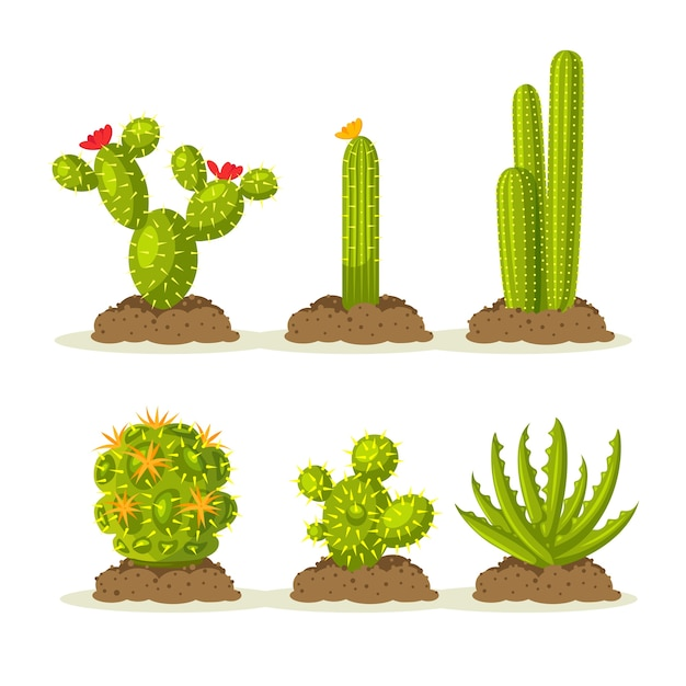 Satz kaktuspflanzen in der wüste zwischen sand und boden, boden Premium Vektoren