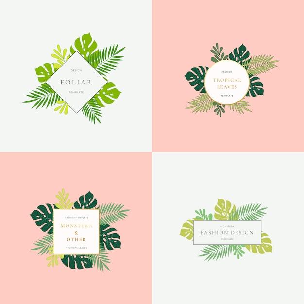 Satz monstera tropical leaves fashion zeichen oder logo-vorlagen. Premium Vektoren
