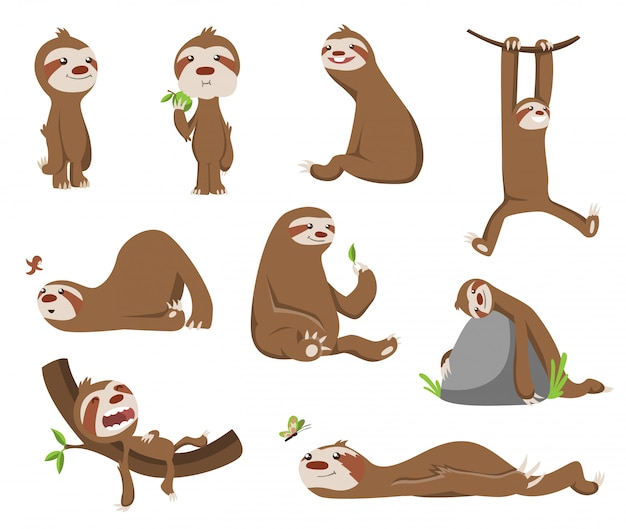 Satz nettes babyfaultier. entzückende comic-tiere. lustige karikaturfaultiere in verschiedenen posen. nette faule charakterillustration Premium Vektoren