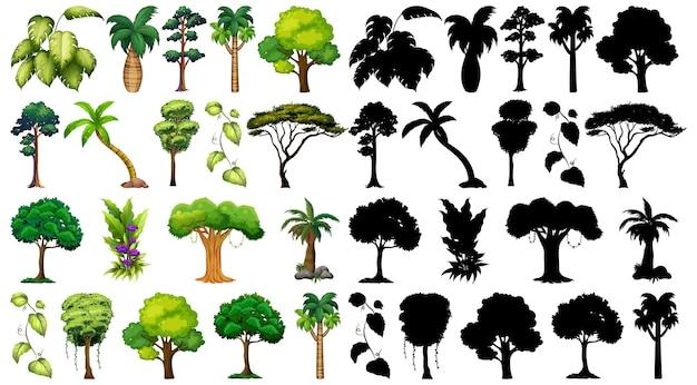 Satz pflanze und baum mit seiner silhouette Kostenlosen Vektoren