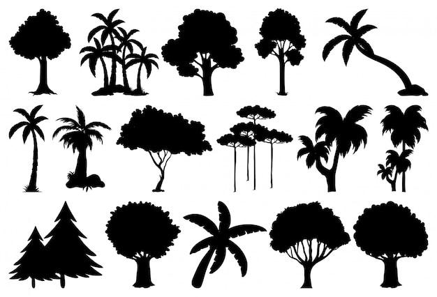 Satz pflanzen- und baumschattenbild Kostenlosen Vektoren