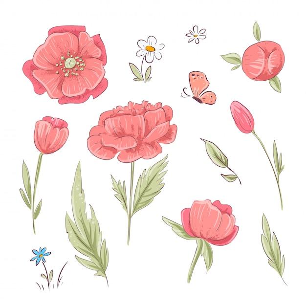 Satz rote mohnblumen und gänseblümchen. handzeichnung. vektor-illustration Premium Vektoren