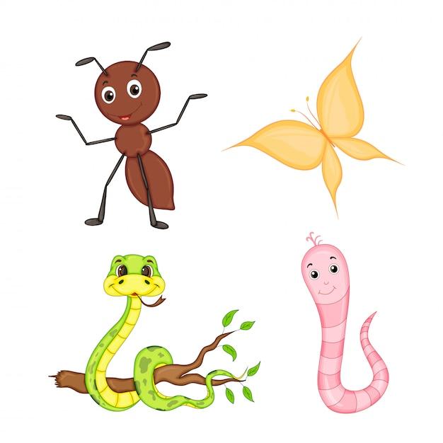 Satz tiere lokalisiert auf weißem hintergrund. niedliche illustrationen von cartoon-tieren Premium Vektoren