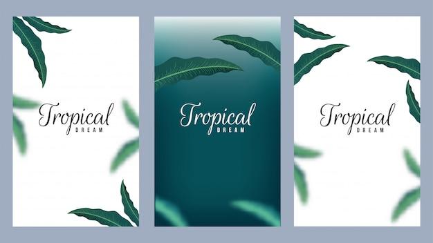 Satz tropisches traumschablonendesign verzierte natürlichen blatthintergrundsatz Premium Vektoren