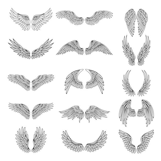 Satz verschiedene stilisierte flügel für logos Premium Vektoren