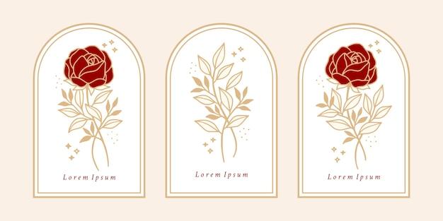 Satz vintage botanische rosenblume und blattzweigelement für weibliches logo und schönheitsmarke Premium Vektoren