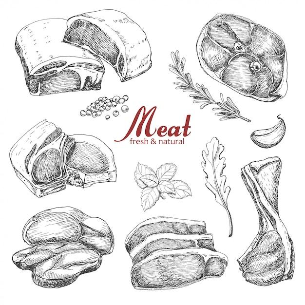 Satz von hand gezeichnetes fleisch Premium Vektoren