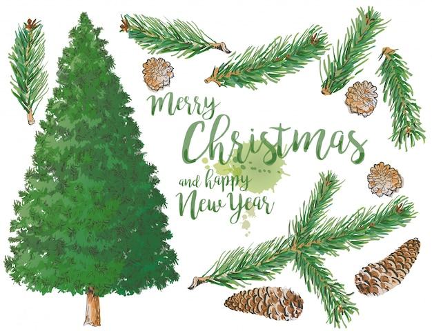 Satz von pine branch tree und fichte branch elemente mit kegel Premium Vektoren