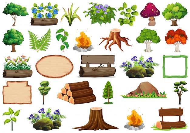 Satz von zierpflanzen und elementen Kostenlosen Vektoren