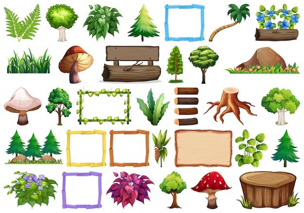 Satz von zierpflanzen Kostenlosen Vektoren