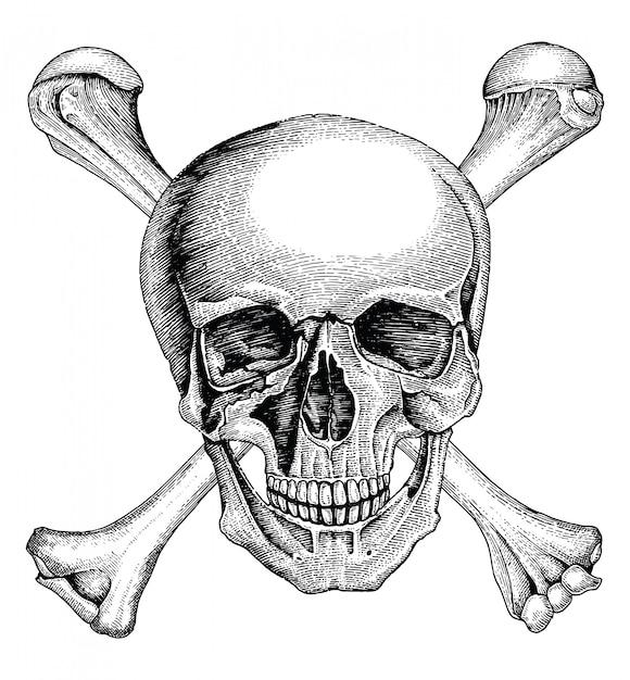 Schädel mit gekreuzten knochen, piratensymbol, logo handzeichnung vintage-stil Premium Vektoren