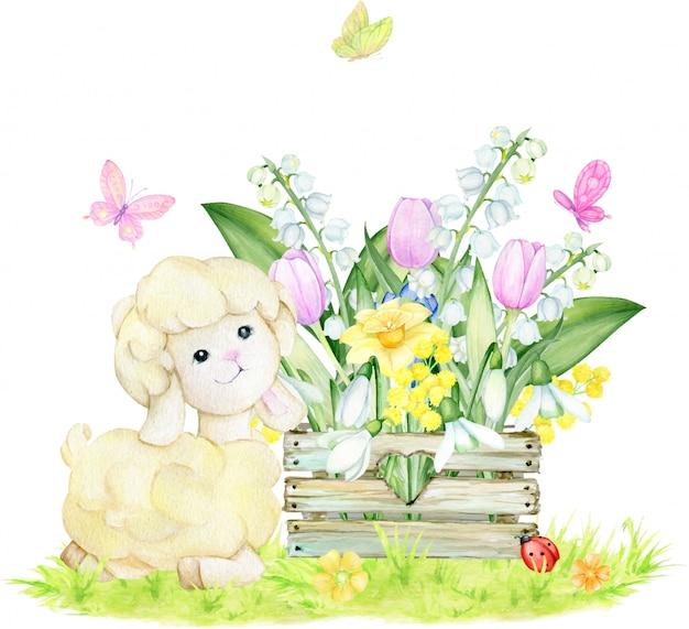 Schafe, holzkiste, schneeglöckchen, weiße maiglöckchen, narzissen, tulpen, schmetterlinge. aquarellkonzept auf einem isolierten hintergrund. frühlingszusammensetzung. Premium Vektoren
