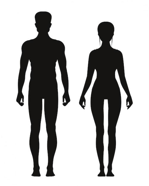 Schattenbild des sportlichen mannes und der frau, die vorderansicht steht. vektoranatomiemodelle Premium Vektoren