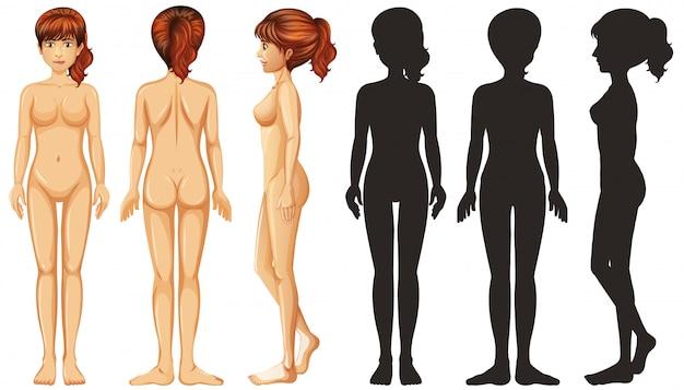 Schattenbildfrau auf weißem hintergrund Kostenlosen Vektoren