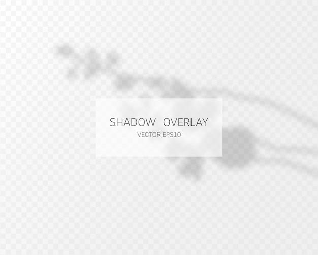 Schattenüberlagerungseffekt. natürliche schatten lokalisiert auf transparentem hintergrund. Premium Vektoren