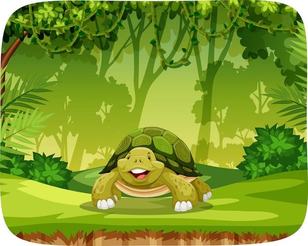 Schildkröte in der dschungelthemaeinstellung Kostenlosen Vektoren