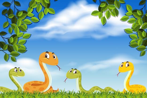Schlangen in der naturszene Premium Vektoren