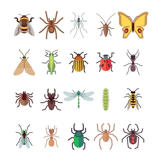 Schmetterling, libelle, spinnen, ameise lokalisiert auf weißem hintergrund Premium Vektoren
