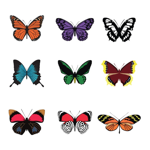 Schmetterlingsfarbsatz Premium Vektoren