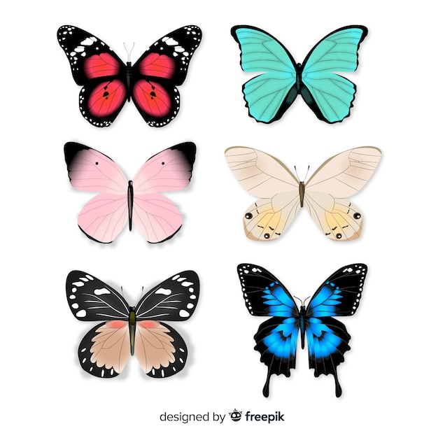 Schmetterlingssammlung Kostenlosen Vektoren