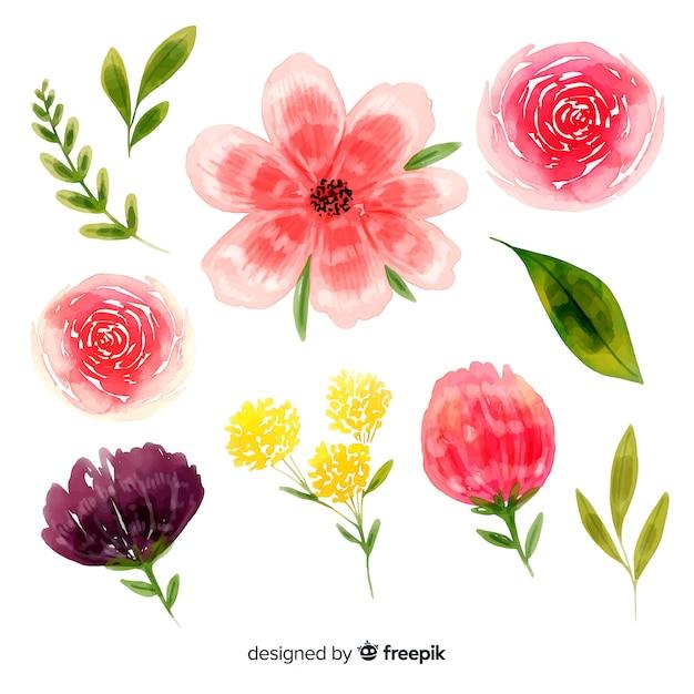 Schöne blüte blüht aquarellhintergrund Kostenlosen Vektoren
