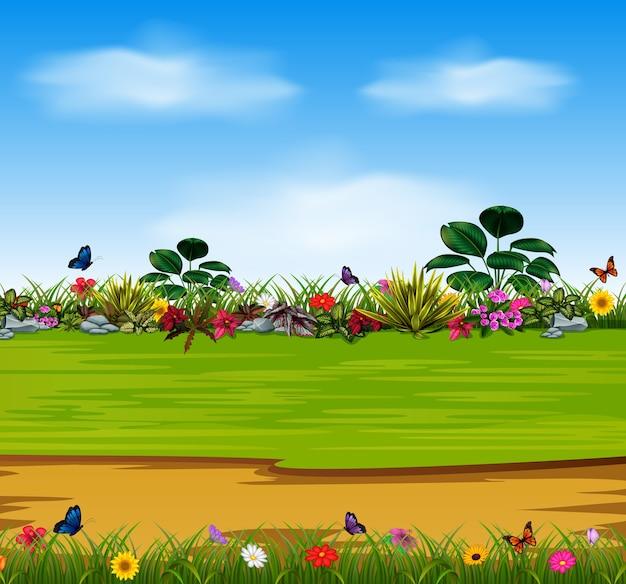 Schöne gartenblumen Premium Vektoren