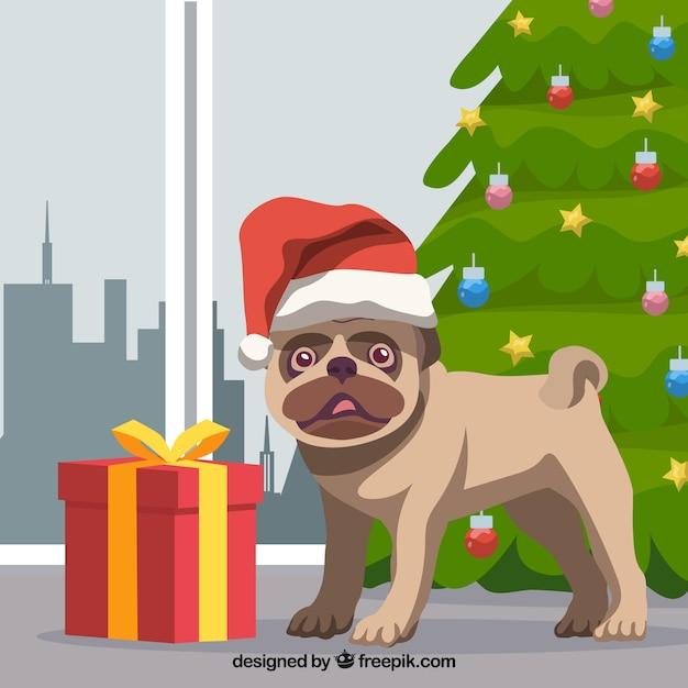 Mops Bilder Weihnachten.Schöne Mops Mit Weihnachten Elemente Download Der Kostenlosen Vektor