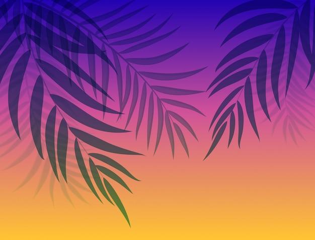 Schöne palme-blatt-schattenbild-hintergrund-vektor-illustration Premium Vektoren