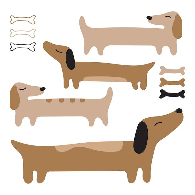 Schöner hund dachshund. lange rote hunde. Premium Vektoren