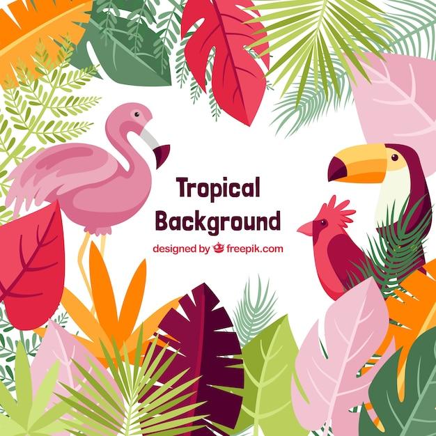 Schöner tropischer hintergrund mit flachem design Premium Vektoren