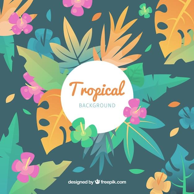 Schöner tropischer hintergrund mit flachem design Kostenlosen Vektoren