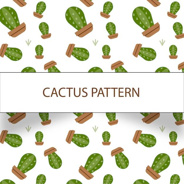 Schönes kaktusmuster auf weißem hintergrund Kostenlosen Vektoren