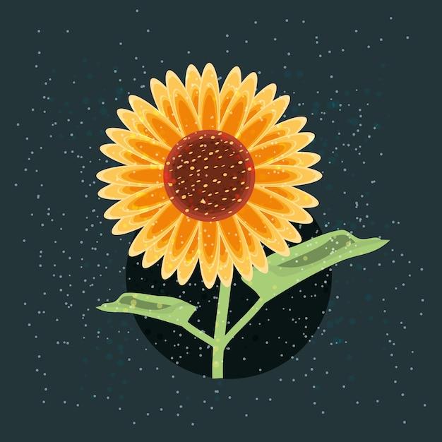 Schönes sonnenblumen design Premium Vektoren