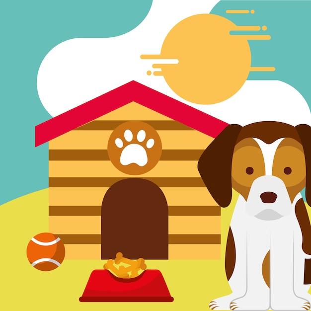 Schoßhund, der mit lebensmittel- und spielzeugball-hundehaus sitzt Premium Vektoren