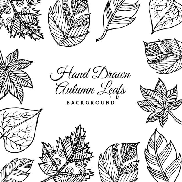 Schwarz Weiß Hand Gezeichnet Herbst Blätter Hintergrund Download