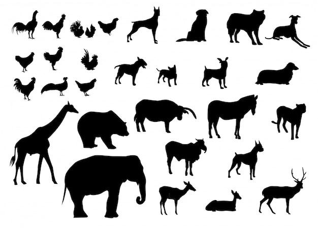 Schwarze silhouetten verschiedene arten von tieren Premium Vektoren