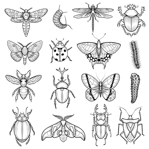 Schwarze weiße linie ikonen der insekten eingestellt Kostenlosen Vektoren