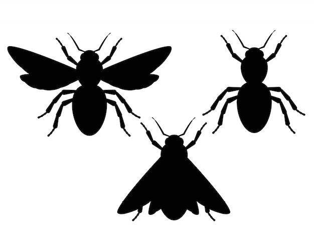 Schwarzweiss-silhouetten von insekten. Premium Vektoren